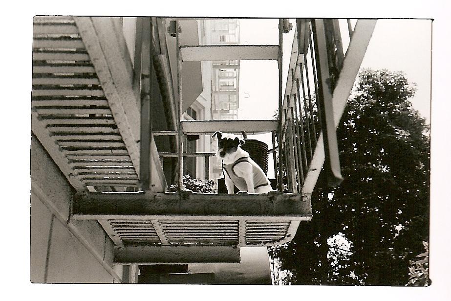 SanFranScans_Kodak400TX_42